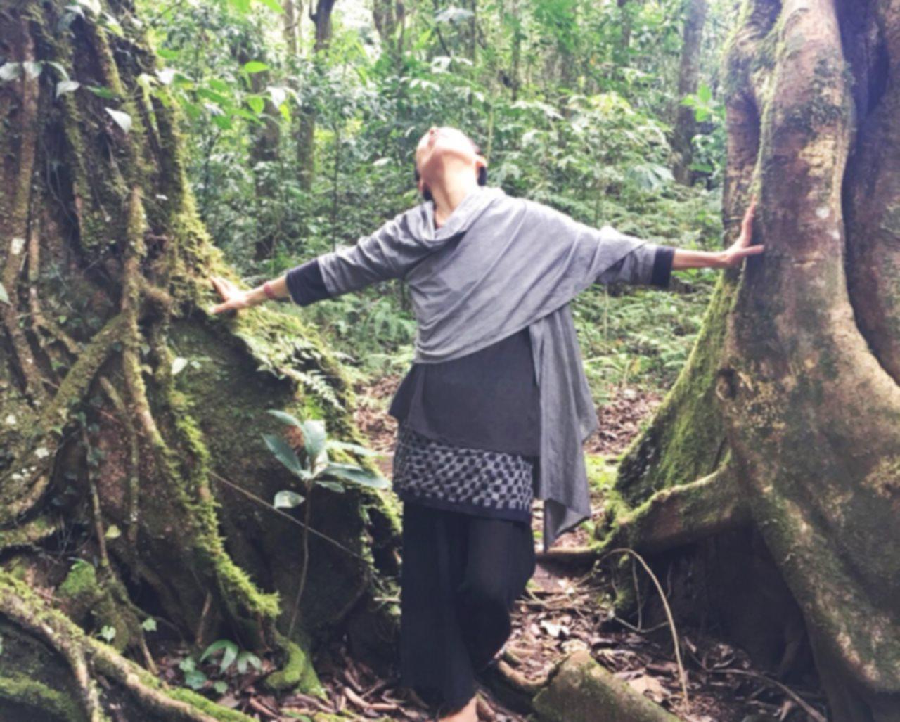 神秘的な森と女性